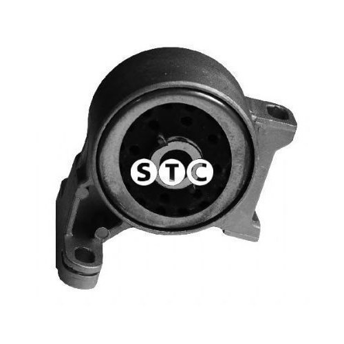 Bsg 30700259 Şanzıman Takozu - Marka: Fdbn - Mondeo - Yıl: 96-