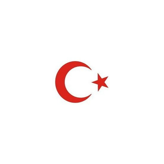 Sticker Masters Türk Bayrağımız Sticker