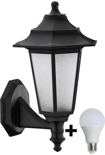Aral Begonya 2 Siyah Bahçe Aydınlatma Armatürü +1 Adet 10 Watt LED Ampul