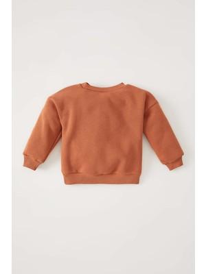 DeFacto Erkek Bebek Regular Fit Sweatshirt V4451A221WN