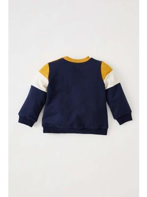 DeFacto Erkek Bebek Regular Fit Bisiklet Yaka Renk Bloklu Sweatshirt W0285A221AU