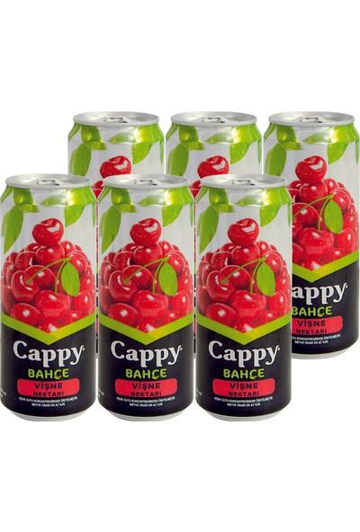 Cappy Vişneli İçecek Teneke Kutu 6 x 330 ml