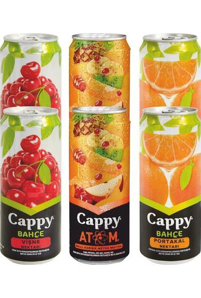 Cappy Meyve Suyu Teneke Kutu Mix 1 6 x 330 ml