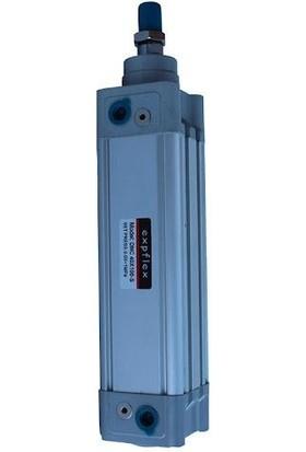 Emc 80X300 Kdnc Manyetik Yastıklı Silindir(Piston)