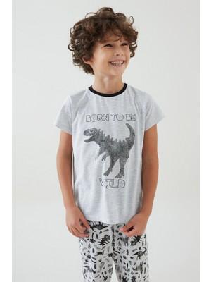 Penti Çok Renkli Erkek Çocuk Wilds 4lü Pijama Takımı
