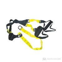 Diesel Fitness Training Belt