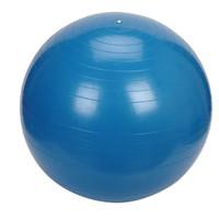 Proform 75 cm Lüx Pilates Topu Mavi P375