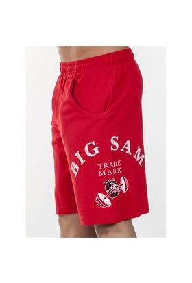 Big Sam Şort 1432
