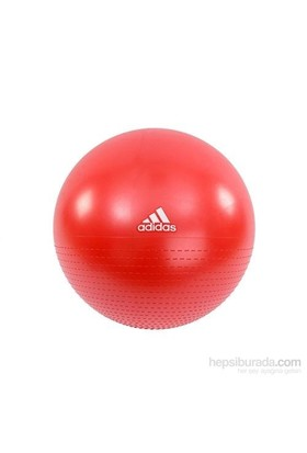 Adidas Ad12241 75 Cm Pilates Topu Ve Pompası