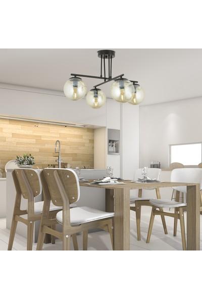 Mali 4 lü siyah avize bal camlı modern salon avize