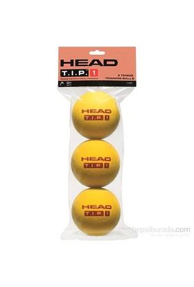 Head 3B Tip Training Tenis Topu