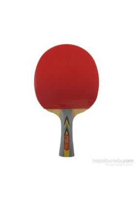 Dhs 3002 Ittf Onaylı Masa Tenisi Raketi