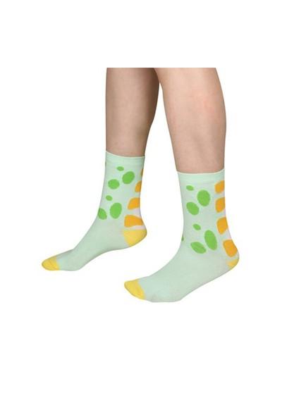The Socks Company Lizard Legs Desenli Kadın Çorap 36-40 Numara