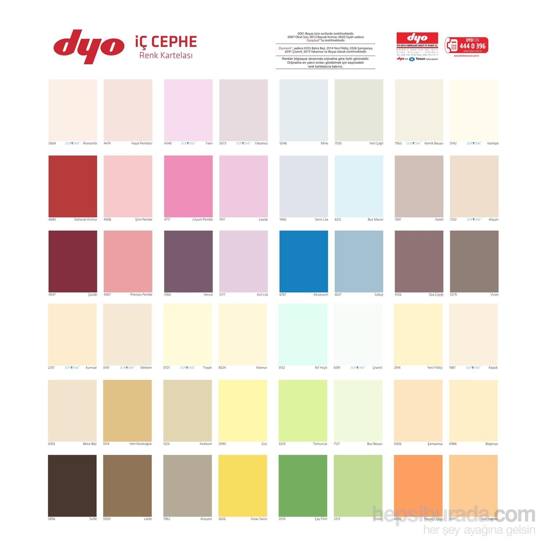 Dyo köpük rengi duvar boyası