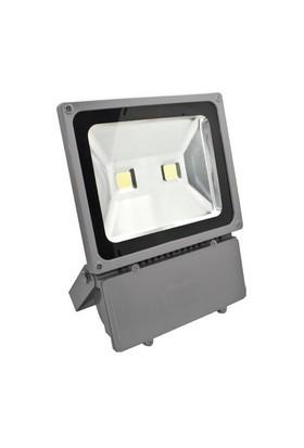 Pelsan 2X50w Cob 6500K Projektor