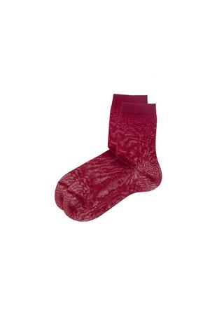 Katia&Bony 00421 Harvard Mercerized Kadın Çorap