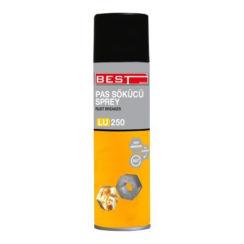 BEST PAS SÖKÜCÜ 250 ML