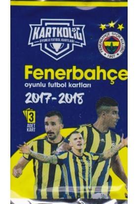 Fenerbahçe 2017-18 Sezon Kartkolig Taraftar Kartları