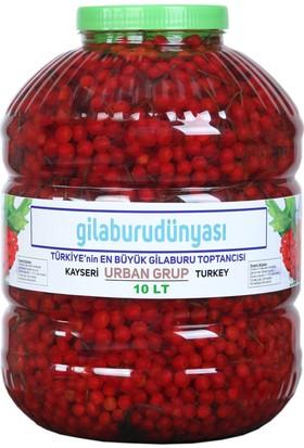Urban Grup Gilaburu Meyve 10 lt (Girabolu Gilaboru Girebolu)
