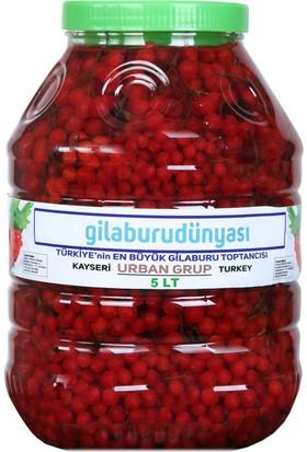 Urban Grup Gilaburu Meyvesi 5 lt (Girabolu Gilaboru Girebolu)
