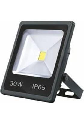 Foblight 30w led Projektör Günışığı