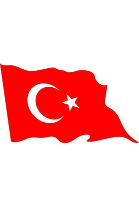 Türk Bayrağı 60X90 Bkt-105