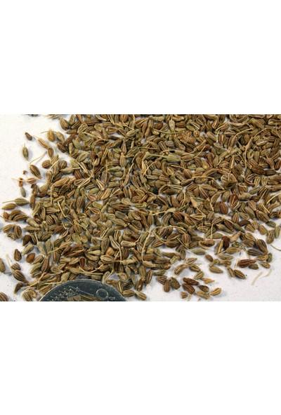 Ayvalık Baharat Anason 100 gr