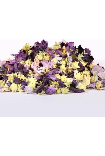 Ayvalık Baharat Hatmi Çiçeği 100 gr