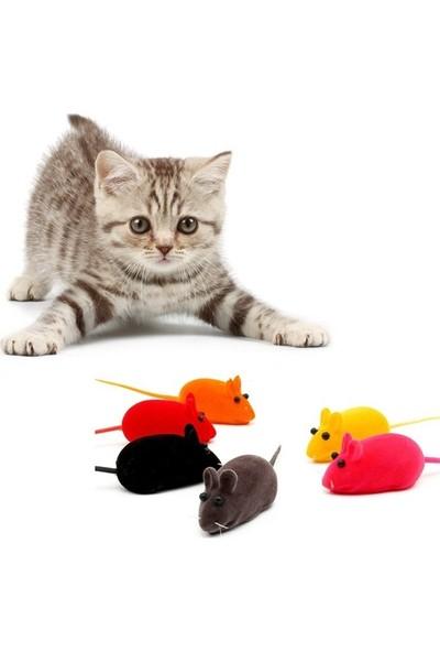 Ans Kedi Oyuncağı Sesli Fare Dört Ayrı Renkte Dört Adet 6 Cm