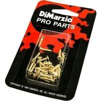 Dımarzıo Fh1000G 24Lü Pickguard / Backplate Vidası -