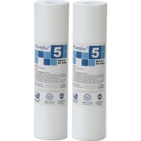 Global Water Solutions Kum ve Tortu Filtresi / 5 mikron (2 Adet)