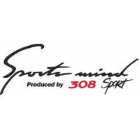 Smoke Peugeot 308 Sport Mind Oto Sticker