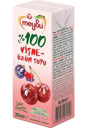 Meysu %100 Vişne-Üzüm Suyu 200 ml