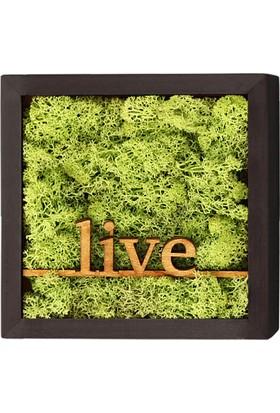 Terra Live Line 20x20cm Yosun Tablo