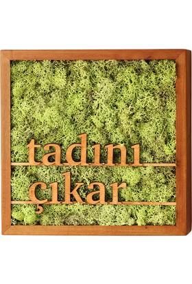 Terra Tadını Çıkar 30x30cm Yosun Tablo