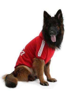 Dogi Dog Kırmızı Adidog Köpek Sweati