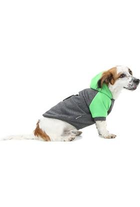 Dogi & Dog Apple Köpek Sweati