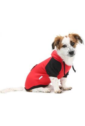 Dogi & Dog Pati Köpek Sweati