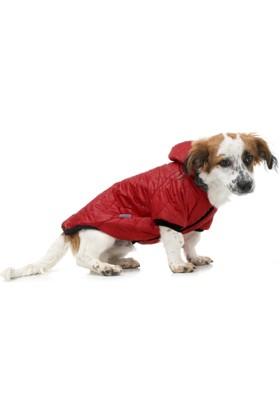 Dogi & Dog Kırmızı Puf Köpek Montu