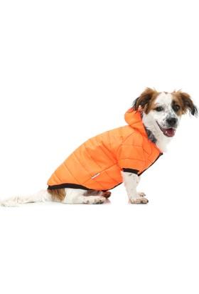 Dogi& Dog Oranj Puf Mont Köpek Yağmurluğu