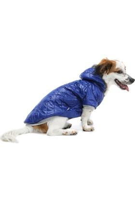 Dogi & Dog Blue Puf Köpek Montu