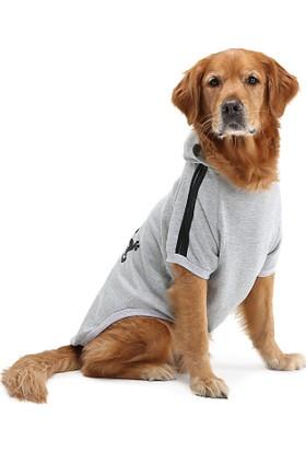 Dogi & Dog Adidog Gri Köpek Sweati