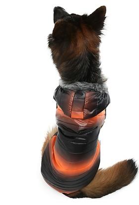 Dogi & Dog Oranj Black Puf Köpek Montu