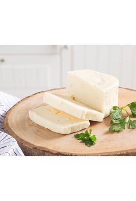 Çanakkaleden Ezine İnek Peyniri 650 gr