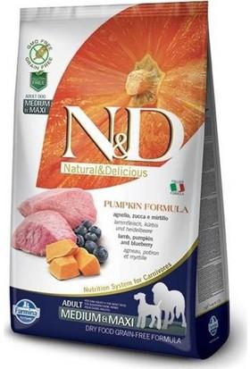 N&D Pumpkin Tahılsız Bal Kabaklı, Kuzu Etli Ve Yaban Mersinli Orta Ve Büyük Irk Yetişkin Köpek Maması 2.5 Kg