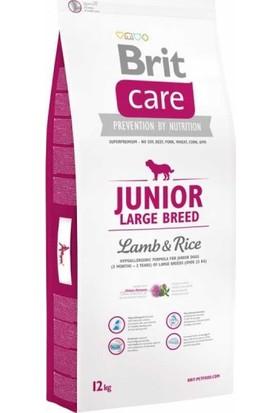 Brıt Care Junıor Kuzu Etli Ve Pirinçli İri Irk Yavru Köpek Maması 12 Kg