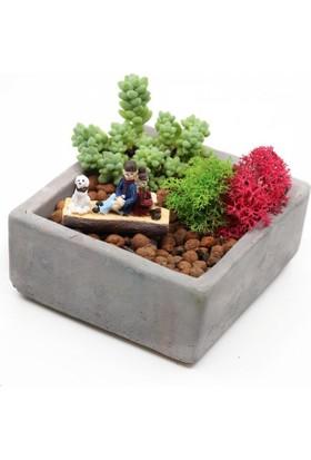 Greenmall Mutluluk Mini Bahçe