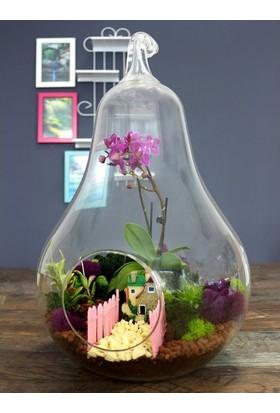 Greenmall Mor Bahçe Orkideli Teraryum