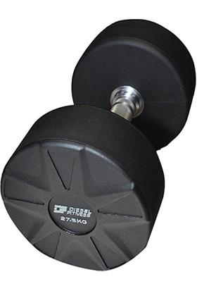 Diesel Fitness Pu Dumbell
