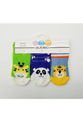 Bumbo Hayvanlar Alemi 3'lü Bebek Çorabı